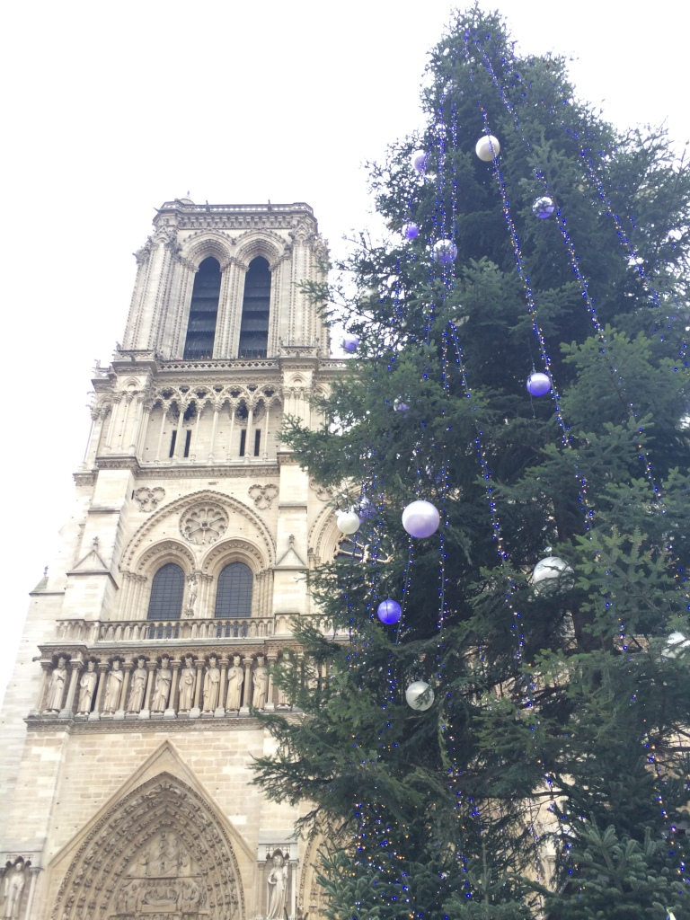 Notre Dame Cathedral at Christmas time