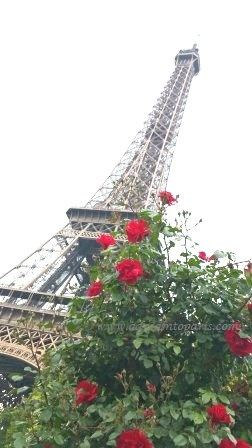 Paris in May